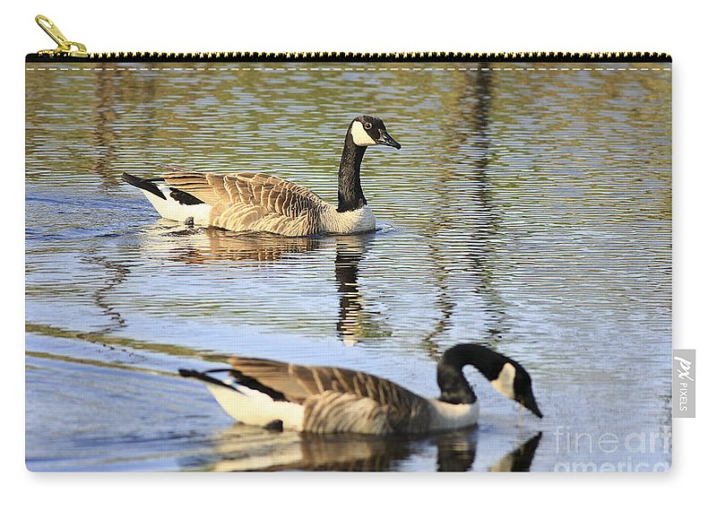 Geese Carry-all Pouch featuring the photograph Evening Light On Nature by Deborah Benoit