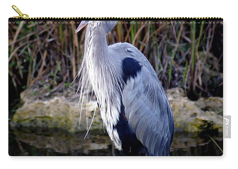 Everglades Carry-all Pouch featuring the photograph Everglades Heron by Marty Koch