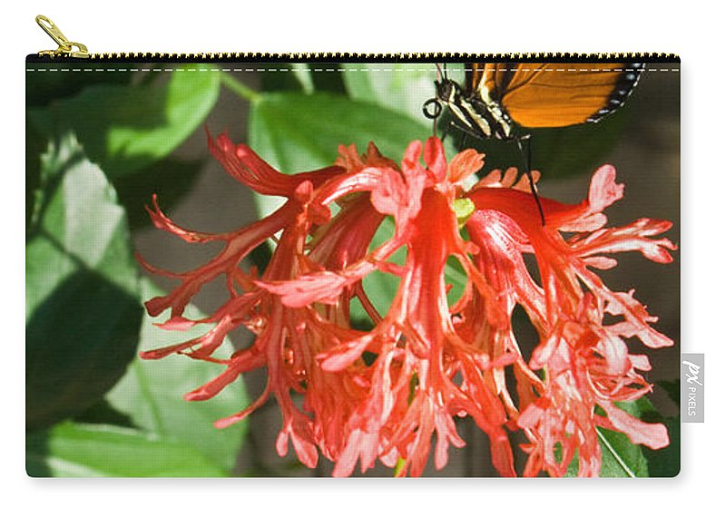 Butterfly Carry-all Pouch featuring the photograph Exotic Butterfly On Flower by Douglas Barnett