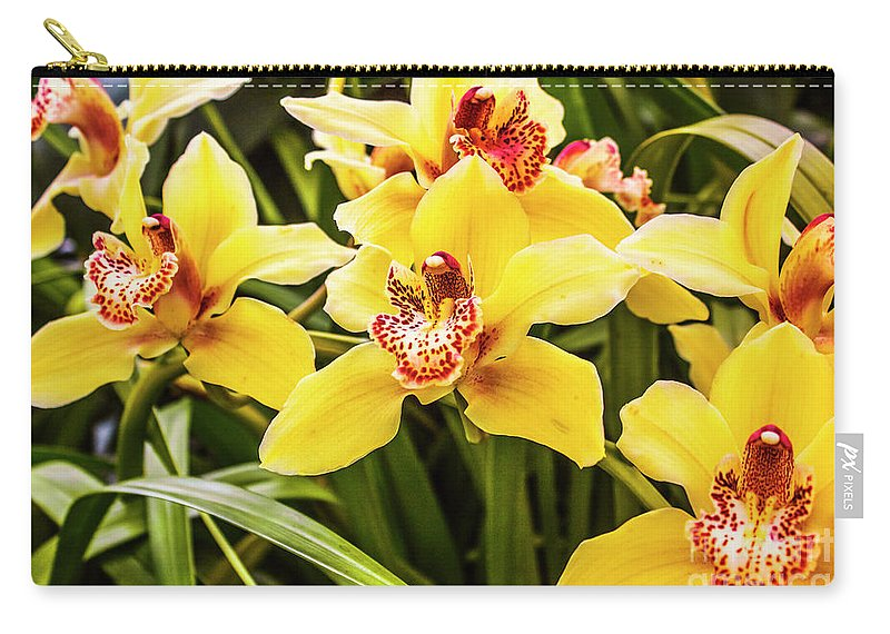 Flora Carry-all Pouch featuring the photograph Exotic Orchids by Jorgo Photography - Wall Art Gallery