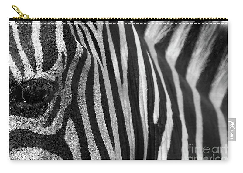 Zebra Carry-all Pouch featuring the photograph Extreme Close Up Of A Zebra by Ofer Zilberstein