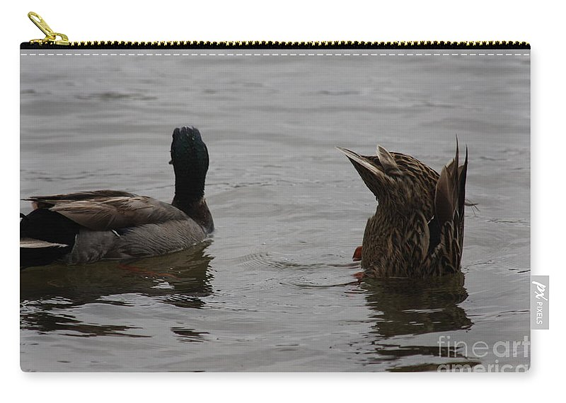 Mallard Duck Photography Carry-all Pouch featuring the photograph Extreme Fishing by Kim Henderson