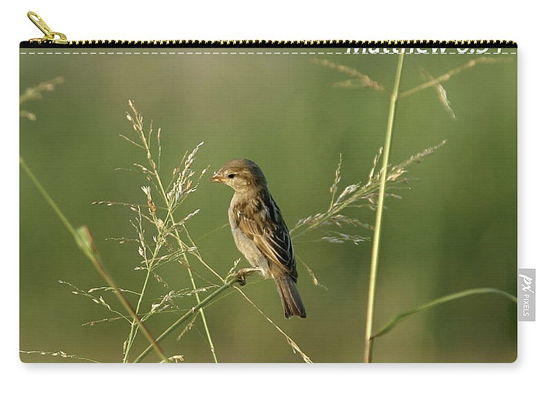 Inspirational Carry-all Pouch featuring the photograph Eye On The Sparrow by Robert Frederick