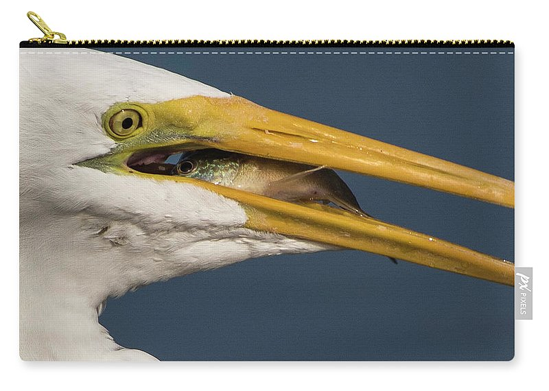 Great Egret Carry-all Pouch featuring the photograph Eye To Eye by Brent Bordelon
