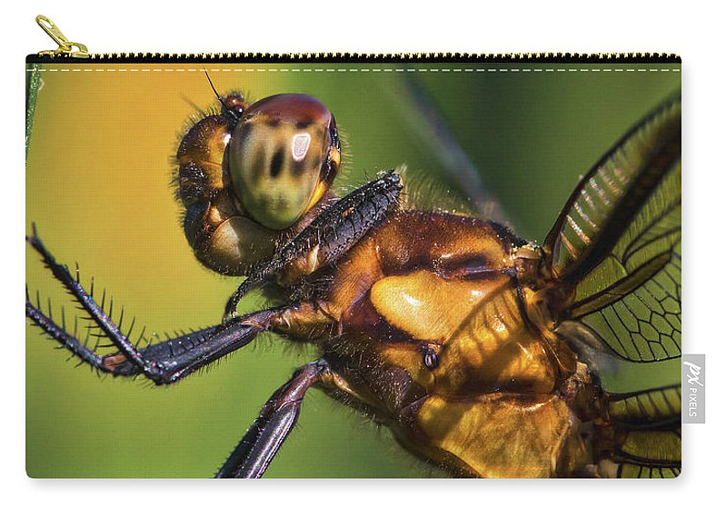 Eye To Eye Dragonfly Carry-all Pouch featuring the photograph Eye To Eye Dragonfly by Mitch Shindelbower