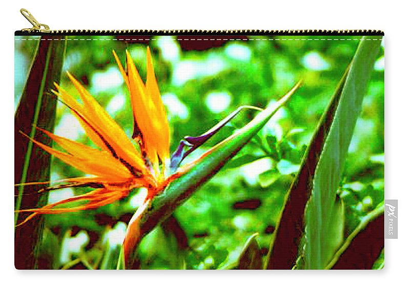 Bird Of Paradise Flower Carry-all Pouch featuring the photograph F21 Bird Of Paradise Flower by Donald k Hall