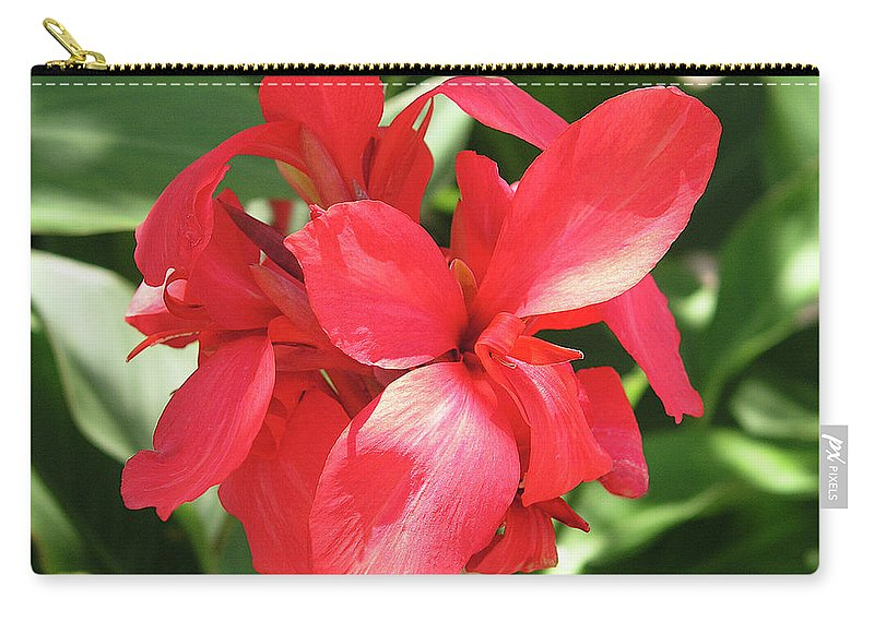 Cannas Flower Carry-all Pouch featuring the photograph F22 Cannas Flower by Donald k Hall