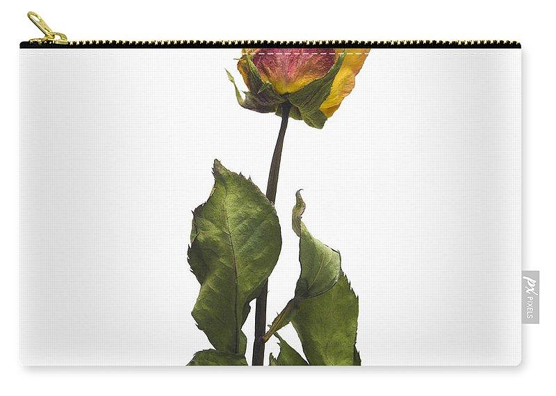 Flower Carry-all Pouch featuring the photograph Faded Rose Flower by Bernard Jaubert