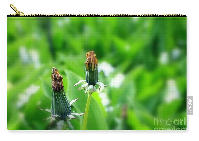 Dandelion Carry-all Pouch featuring the photograph Faded by Steve K