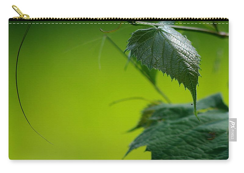 Jenny Gandert Carry-all Pouch featuring the photograph Fading Memories by Jenny Gandert