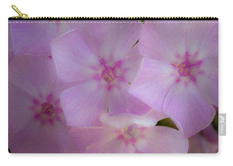 Phlox Carry-all Pouch featuring the photograph Fairy Tale Phlox by Teresa Mucha
