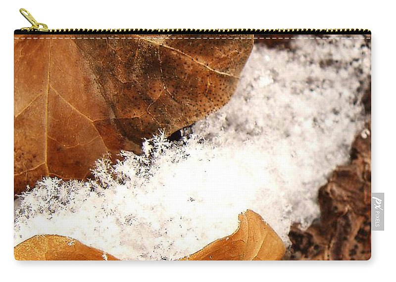 Fall Carry-all Pouch featuring the photograph Fall And Winter by Gaby Swanson