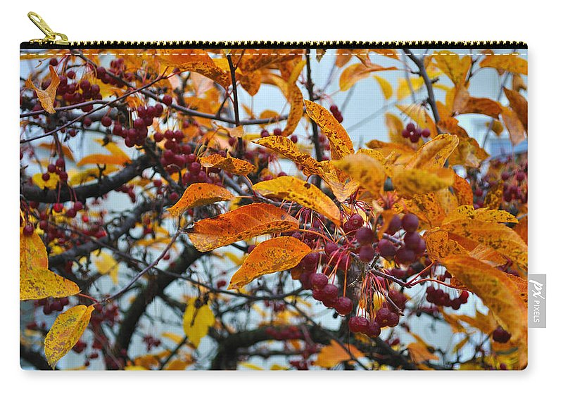 Berries Carry-all Pouch featuring the photograph Fall Berries by Tim Nyberg