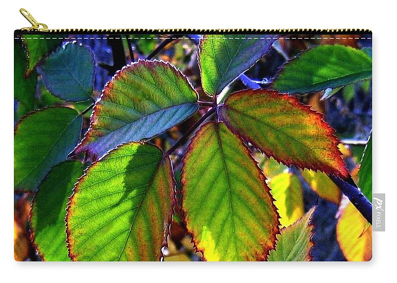 Fall Carry-all Pouch featuring the photograph Fall Blackberry by Will Borden