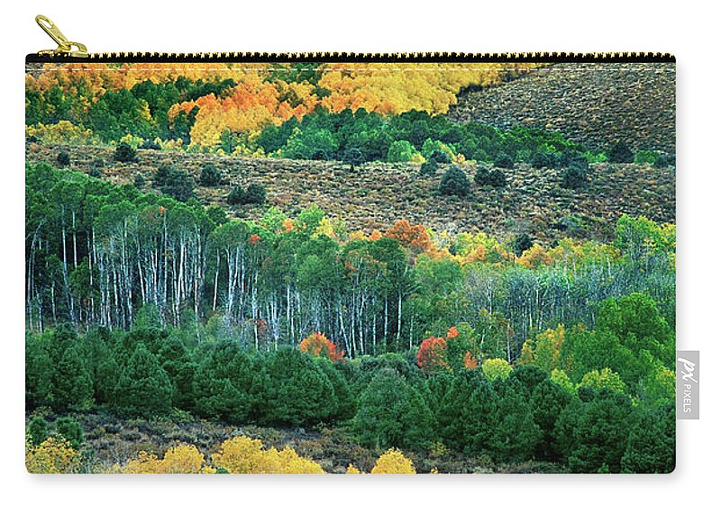Dave Welling Carry-all Pouch featuring the photograph Fall Color In The Eastern Sierras California by Dave Welling