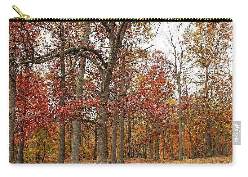 Landscape Carry-all Pouch featuring the photograph Fall Colors by Alicia Joerger