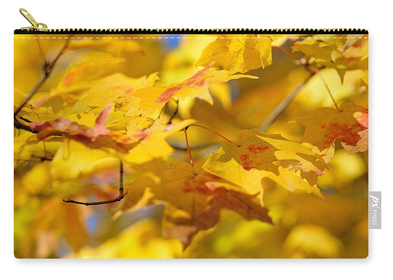 Nature Carry-all Pouch featuring the photograph Fall Colors by Sebastian Musial