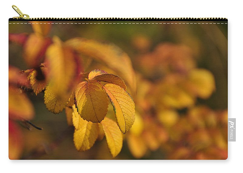 Fall Carry-all Pouch featuring the digital art Fall by Dorothy Binder