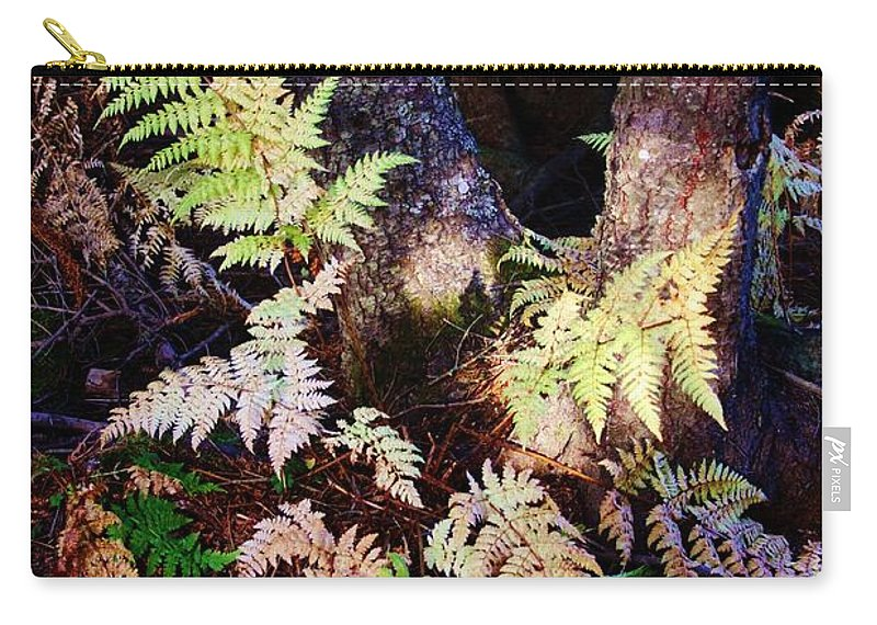 Alaskan Ferns In Autumn Carry-all Pouch featuring the photograph Fall Ferns by Lori Mahaffey