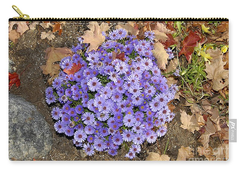 Fall Carry-all Pouch featuring the photograph Fall Flowers by David Lee Thompson