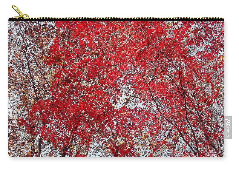 Leaves Carry-all Pouch featuring the photograph Fall Foilage by Deborah Crew-Johnson
