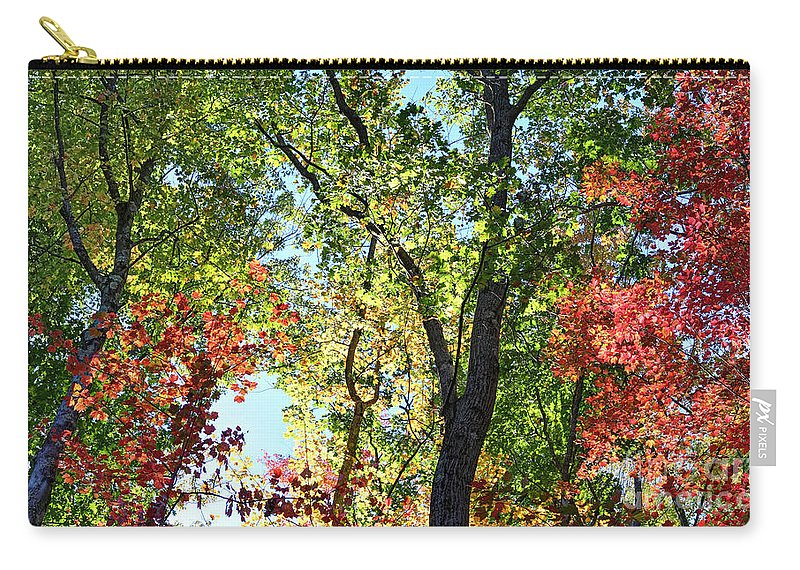 Forest Carry-all Pouch featuring the photograph Fall Foliage by Dia Karanouh
