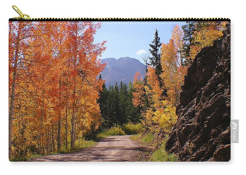Trees Carry-all Pouch featuring the photograph Fall In Colorado by Carol Milisen