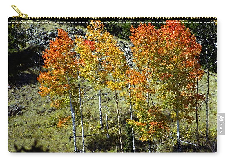 Carry-all Pouch featuring the photograph Fall In Colorado by Marty Koch