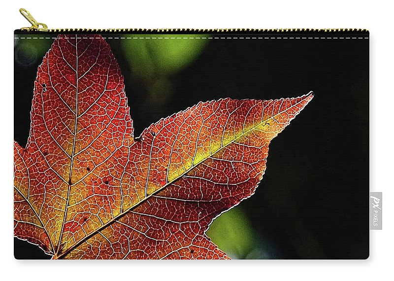 Fall Carry-all Pouch featuring the photograph Fall Leaf by Ronda Ryan