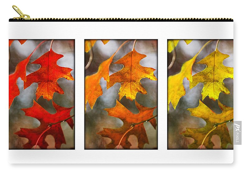 Leaves Carry-all Pouch featuring the photograph Fall Leaves by Jill Reger