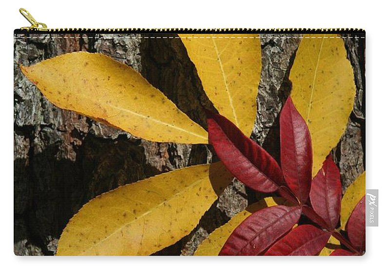 Fall Carry-all Pouch featuring the photograph Fall Leaves by Tina Meador
