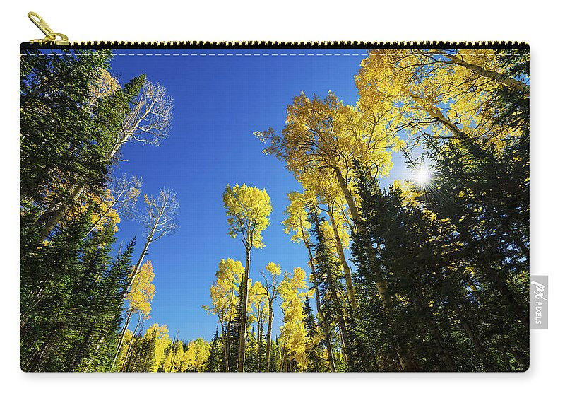 Fall Light Carry-all Pouch featuring the photograph Fall Light by Chad Dutson