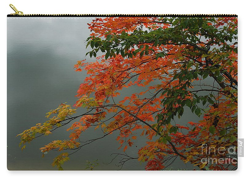 Trees Carry-all Pouch featuring the photograph Fall by Michelle Hastings