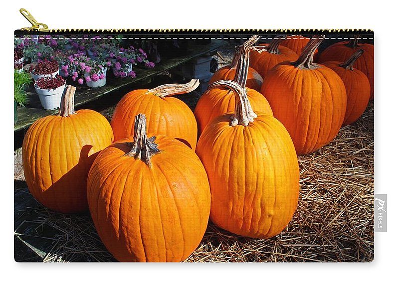 Orange Carry-all Pouch featuring the photograph Fall Pumpkins by Michiale Schneider