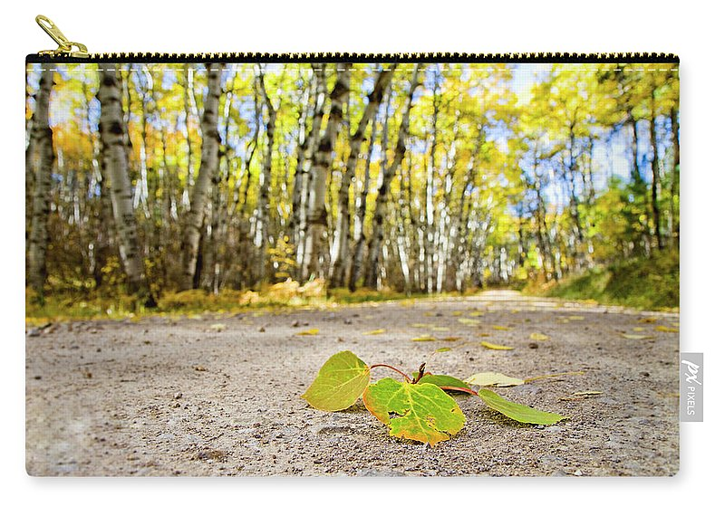 Fall Carry-all Pouch featuring the photograph Fall Road by David M Porter
