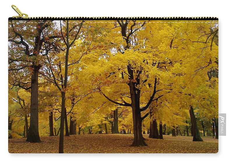 Fall Carry-all Pouch featuring the photograph Fall Series 5 by Anita Burgermeister