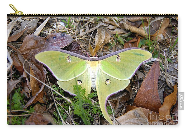 Moth Carry-all Pouch featuring the photograph Fallen Angel by David Lee Thompson