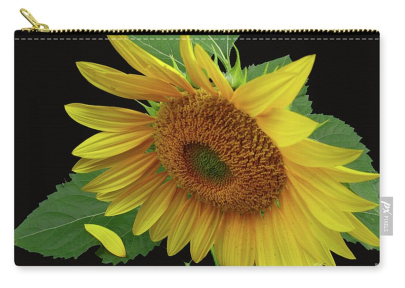 Sunflower Carry-all Pouch featuring the photograph Fallen by Douglas Stucky