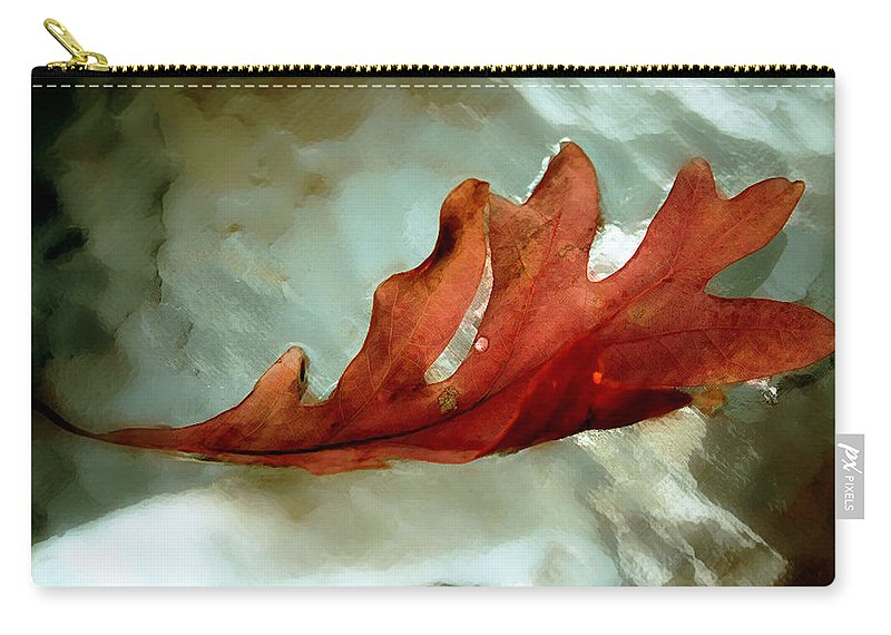 Nature Carry-all Pouch featuring the photograph Fallen Leaf by Linda Sannuti