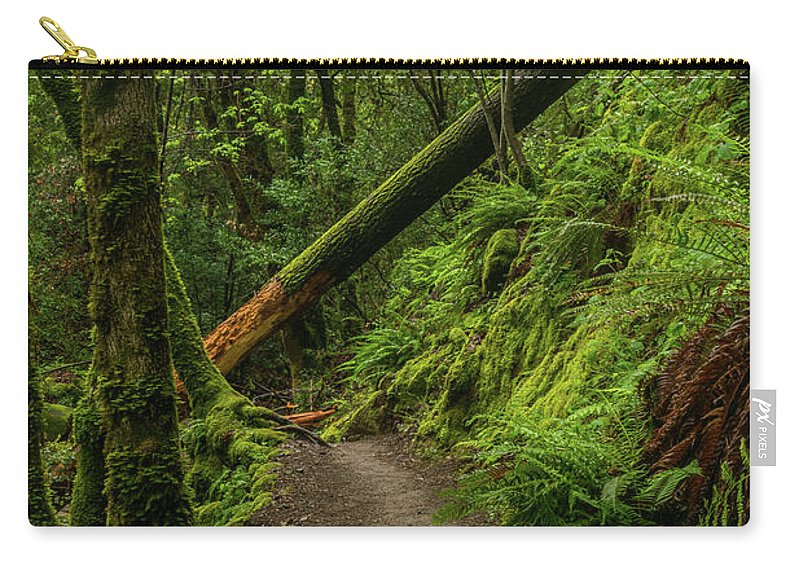 Landscape Carry-all Pouch featuring the photograph Fallen Tree On The Trail by Javier Flores