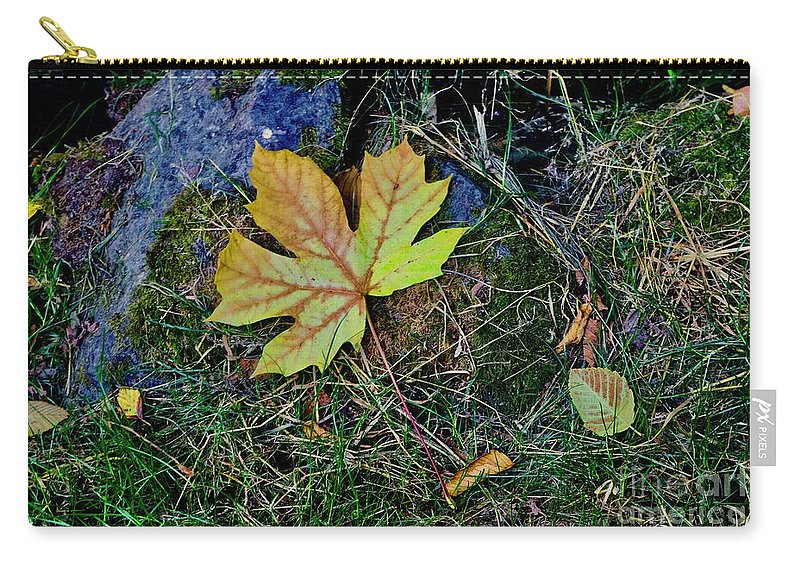 Leaves Carry-all Pouch featuring the photograph Falling Leaves by Craig Wood