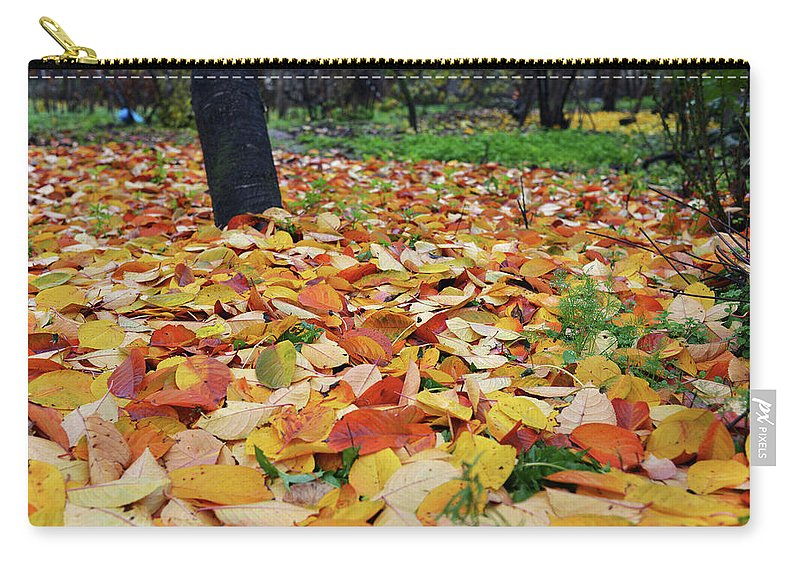 Falling Leaves Carry-all Pouch featuring the photograph Falling Leaves by Tamar Mirianashvili