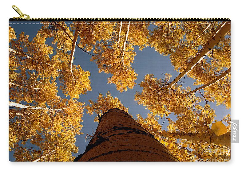Fall Carry-all Pouch featuring the photograph Falling Sky by David Lee Thompson