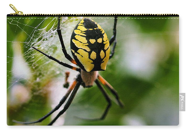 Argiope Carry-all Pouch featuring the photograph False Threats by Angela Rath