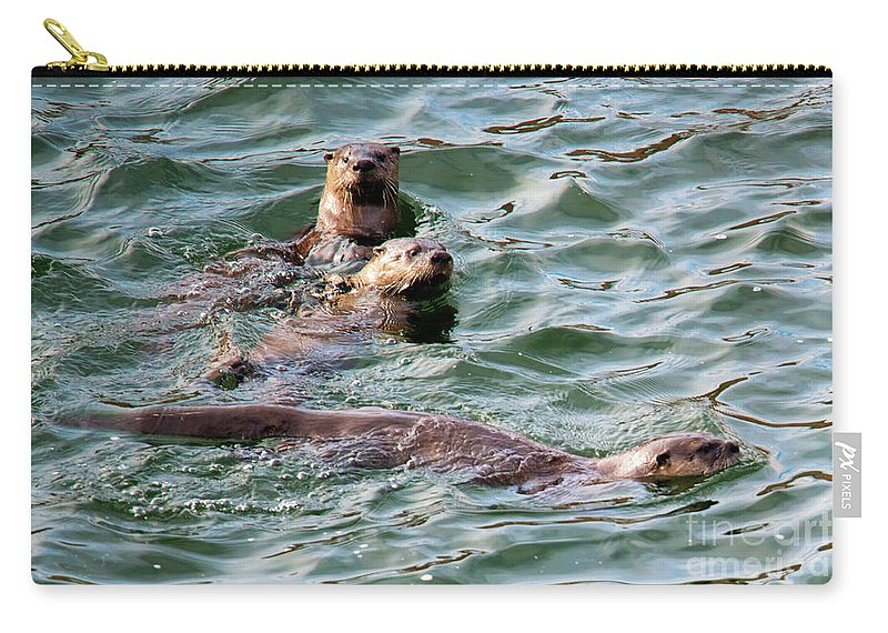 Otters Carry-all Pouch featuring the photograph Family Play Time by Mike Dawson