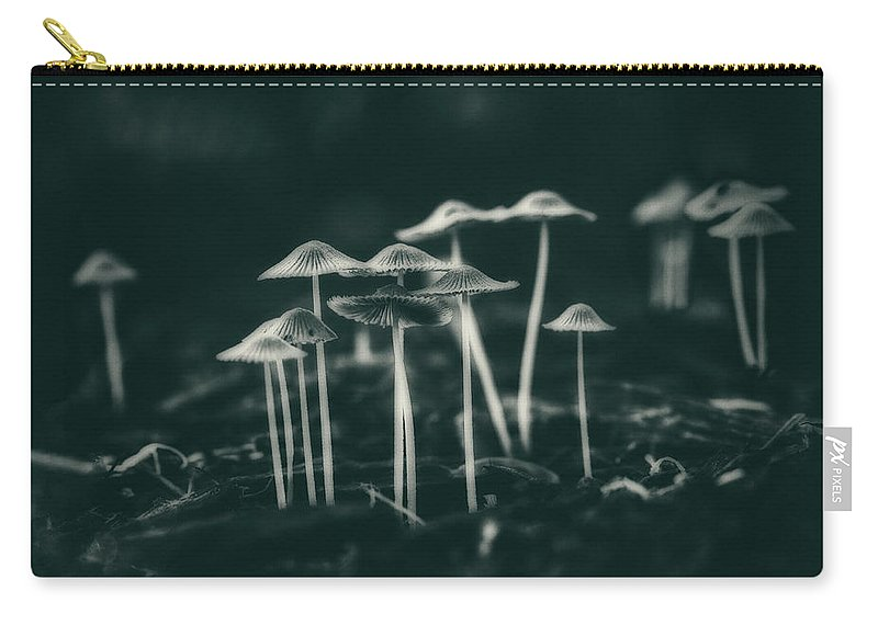 Fungus Carry-all Pouch featuring the photograph Fanciful Fungus by Tom Mc Nemar