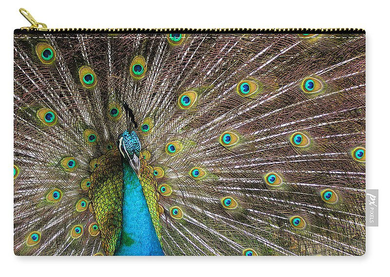 Avian Carry-all Pouch featuring the photograph Fanfare by Alana Thrower