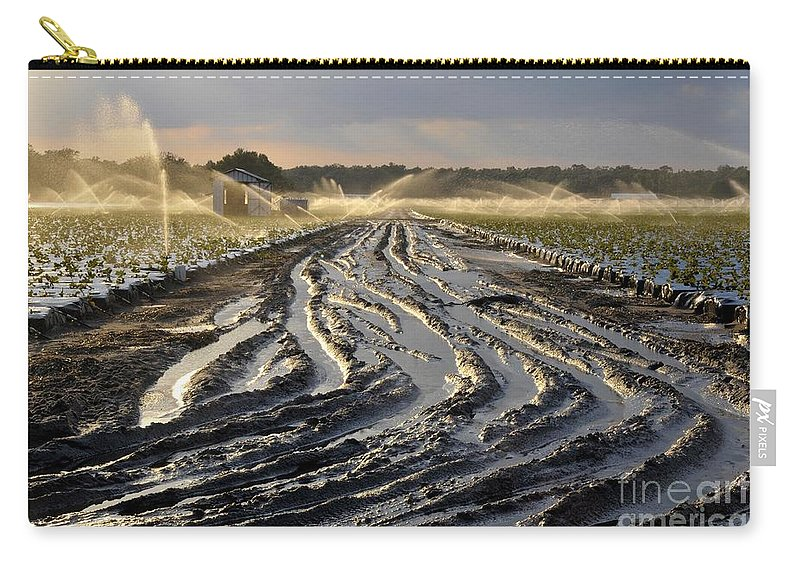 Farming Carry-all Pouch featuring the photograph Farming Strawberries by David Lee Thompson