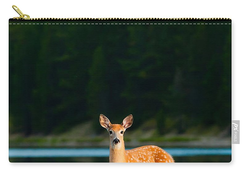 2006 Carry-all Pouch featuring the photograph Fawn by Sebastian Musial
