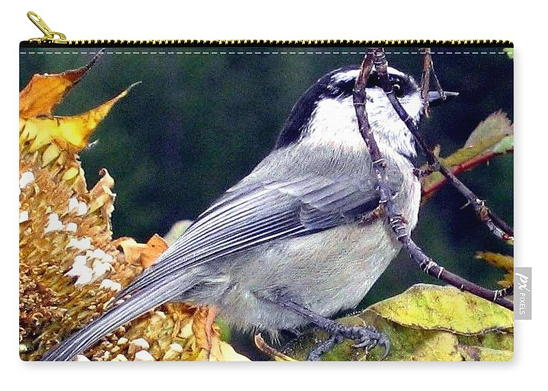 Autumn Carry-all Pouch featuring the photograph Feast For A Chickadee by Will Borden